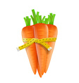 Measuring tape around a carrot vector image