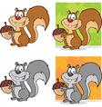 Squirell cartoon vector image