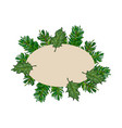 fir tree and mistletoe oval frame label banner vector image