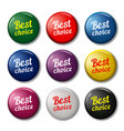 round buttons with text best choice vector image