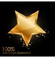 100 satisfaction guarantee vector image