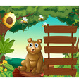 Bear sitting next to wooden signs in jungle vector image