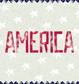 Patriotic background AMERICA vector image