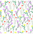 summer delicate wild flowers pastel color vector image