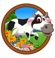 funny cow cartoon posing vector image