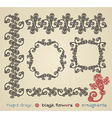 hand draw black flower ornament and frame vector image