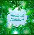 tropical summer background season vacation vector image