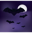 bats in the sky vector image vector image