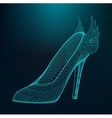 women high-heeled shoes vector image