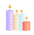 a set of burning candles decoration for christmas vector image
