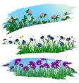 Summer flower brushes vector image