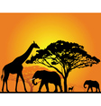 african safari silhouette vector image vector image