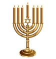 Hanukkah candleholder with 7 candles Candlestick vector image