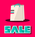 Sale Title with Retro Paper Shopping Bag on Pink vector image