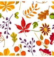 Seamless pattern with autumn leaves and plants vector image vector image