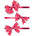 set of different types of pink satin ribbons with vector image