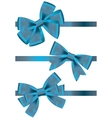 set of different types of blue satin ribbons with vector image