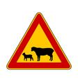 Sheep flock warning sign vector image vector image