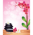 spa orchid pink background vector image