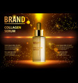 cosmetic beauty product ads of premium serum vector image