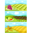 harvest card vector image