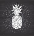 vintage label hand drawn pineapple grunge vector image