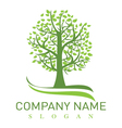 oak tree logo vector image