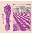 lavender bouquet with landscape vector image