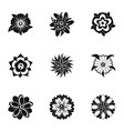 stylized flower icon set simple style vector image
