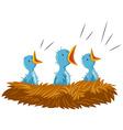 Three baby birds in nest vector image