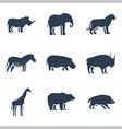 Wild animals icon vector image