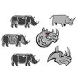 African rhinoceros characters vector image