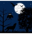 Night on Halloween vector image