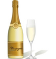 glass of champagne and bottle isolated vector image