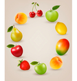 Set of healthy food fruit vector image