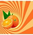 Striped spiral orange confectioners background vector image