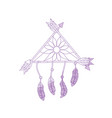 silhouette beauty dream catcher with feathers and vector image