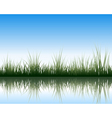 water grass and flower vector image