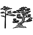 ink conifer trees vector image