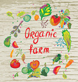 Organic farm banner with frame and texture - vector image vector image