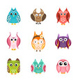 set of cute owls vector image