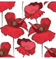 Seamless pattern with hand drawn poppy flowers vector image vector image