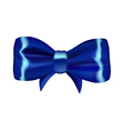 Blue gift bow vector image
