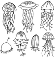 stylized isolation jellyfish vector image vector image