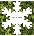 evergreen christmas tree Christmas snowflake vector image