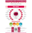 food infographics poster red wine alcohol drink vector image