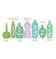 Aromatic Herbs Essentials vector image
