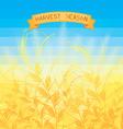 Harvest season vector image vector image