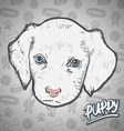 Painted head puppy vector image