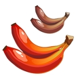 Delicious ripe bananas mixed colors brown and red vector image